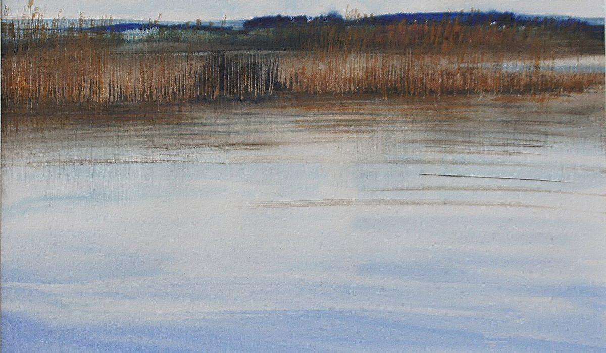 Aquarelle, Ile aux roseaux Faoug, Anne-Marie Bugna