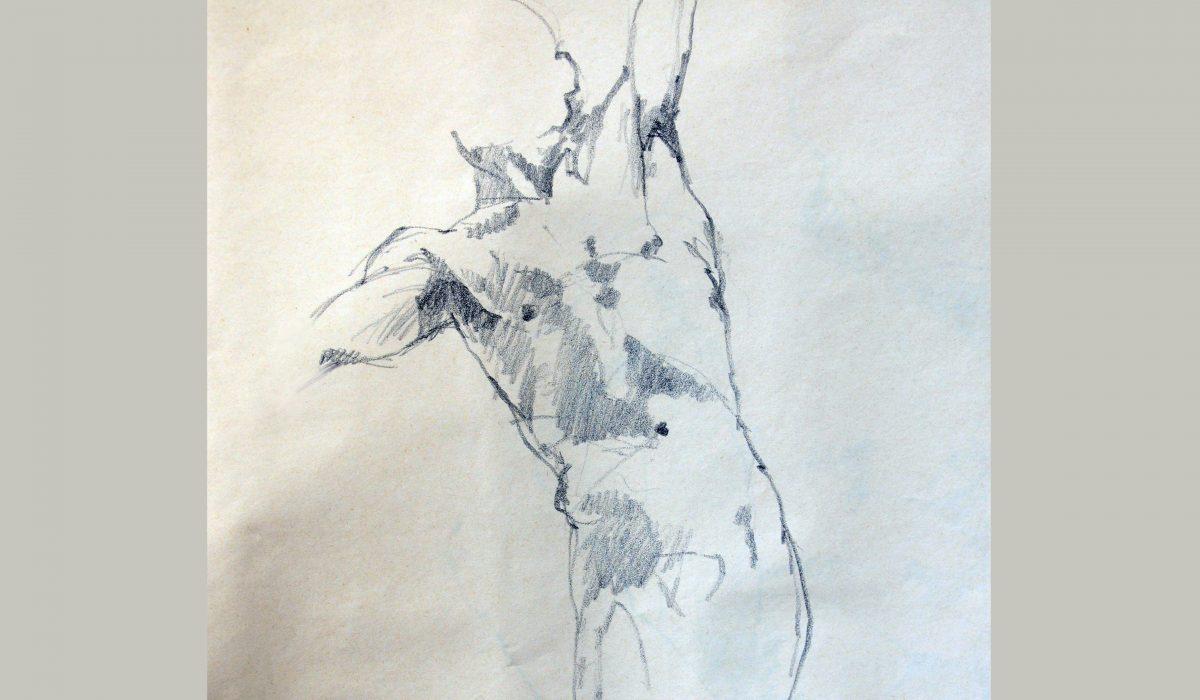 Crayon graphite, esquisse minute. Anne-Marie Bugna